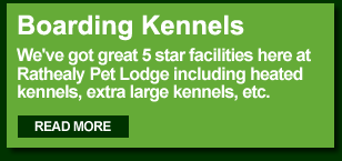 Rathealy Pet Lodge Boarding Kennels