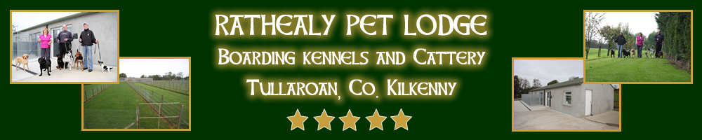 Dog Boarding Kennels and Cattery